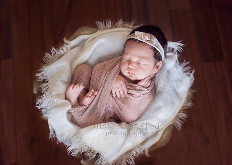 Austin newborn photograph