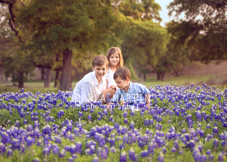 austin bluebonnet mini session