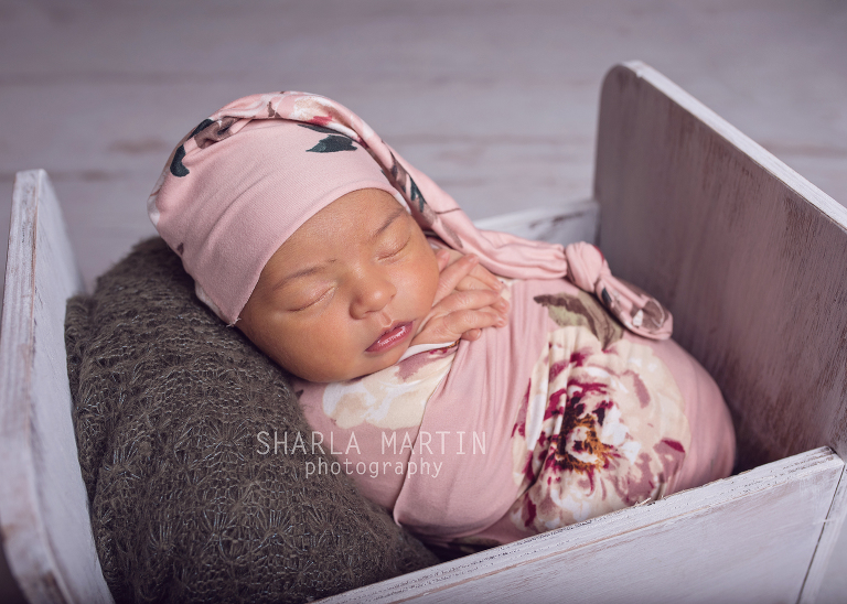 austin new baby photos