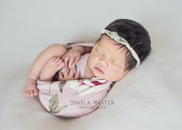 newborn photos austin