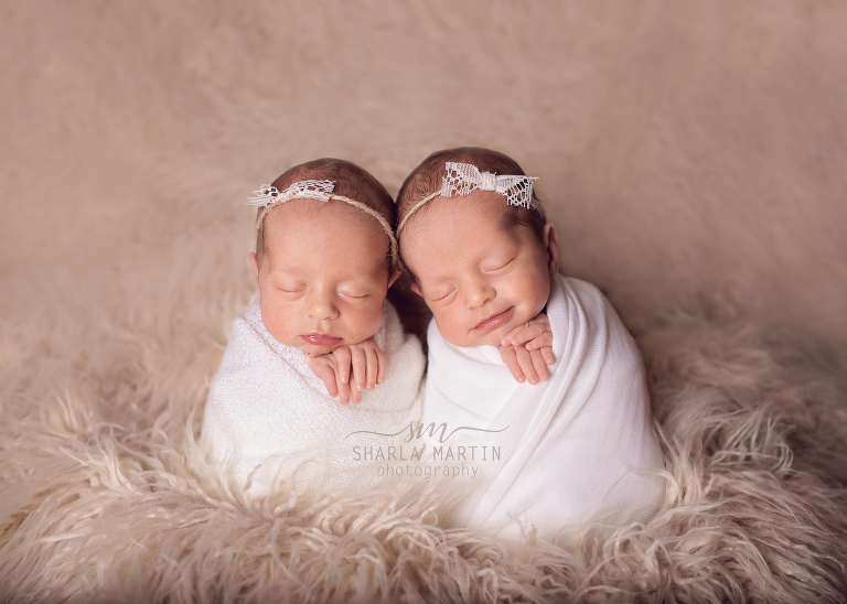 austin twin newborn photography