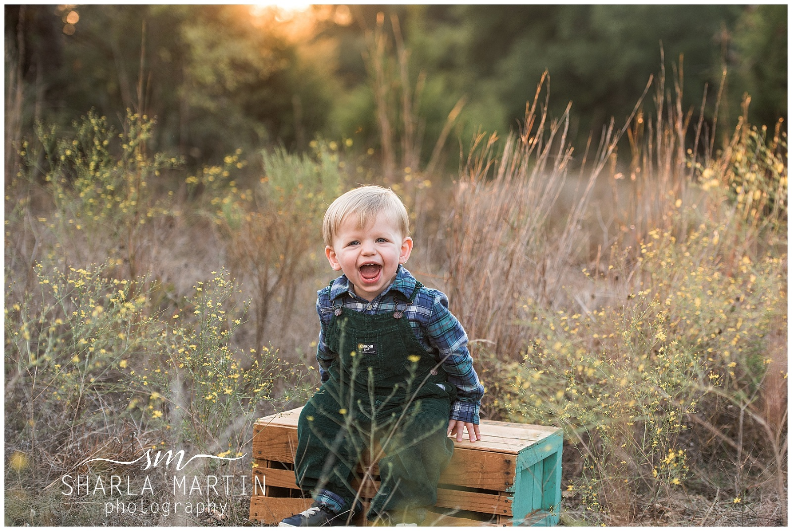 austin family session