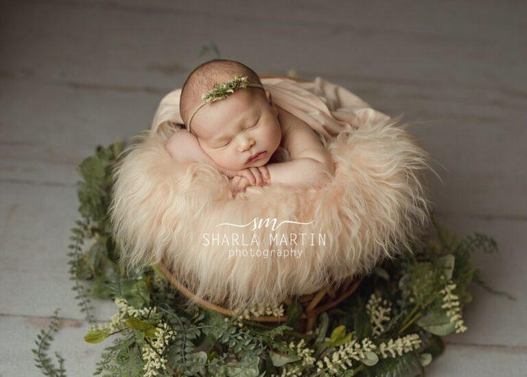 newborn posing in basket
